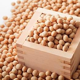 塩田産大豆